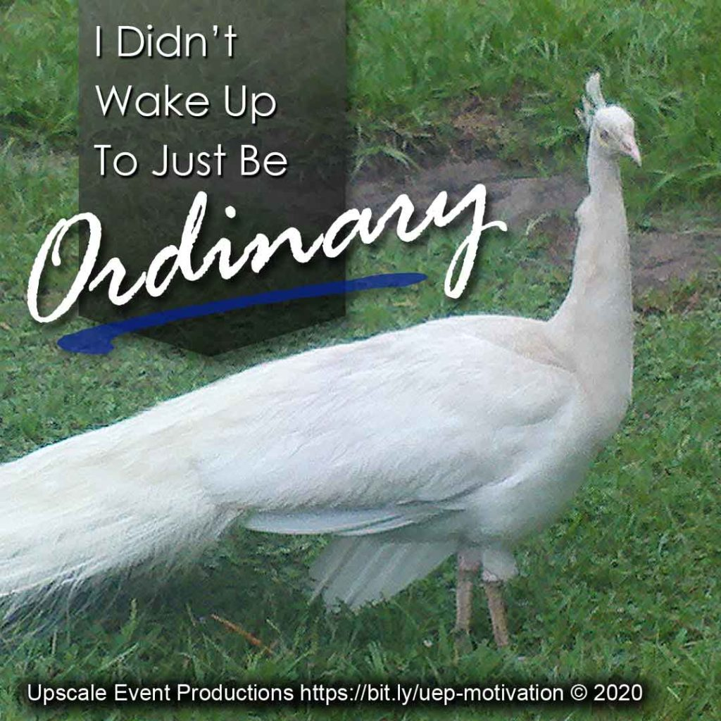 I didn't wake up today to just be ordinary
